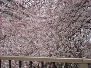 灌仏会・花まつり